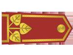 Výložky generála četnictva z let 1937-39.