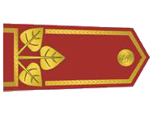 Výložky generála četnictva z let 1930-37.